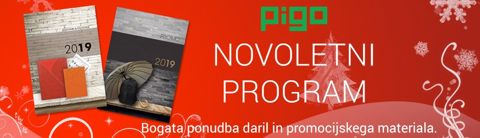 Novoletni program
